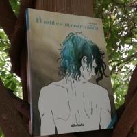 """Novela gráfica: """"El azul es un color cálido"""", de Julie Maroh"""